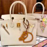 エルメス バーキン人気色をブログで特集!25・30・35おすすめ・レアカラー、金具などカラー一覧☆