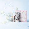ハッチ(HACCI)クリスマスコフレ2018通販・予約&店舗発売、口コミ等ブログで特集!素敵な小物付きのセット(キット)はギフトにも☆全種類買いしたい可愛いさ!
